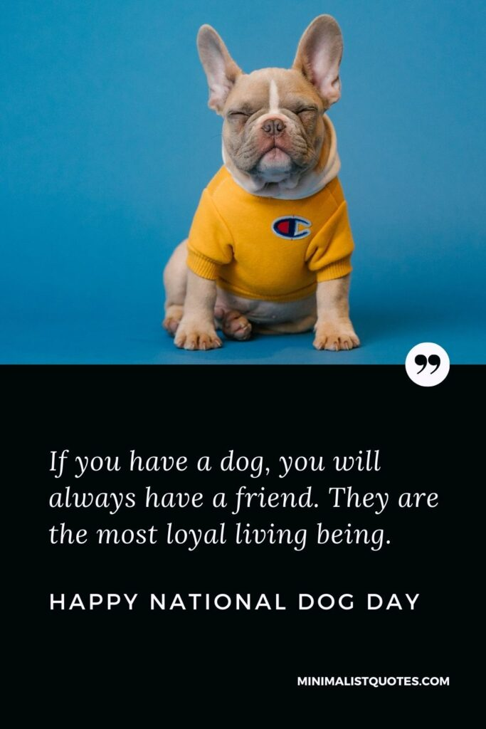 National Dog Day Wish, Quote & Message With Image: If you have a dog, you will always have a friend. They are the most loyal living being. Happy National Dog Day!