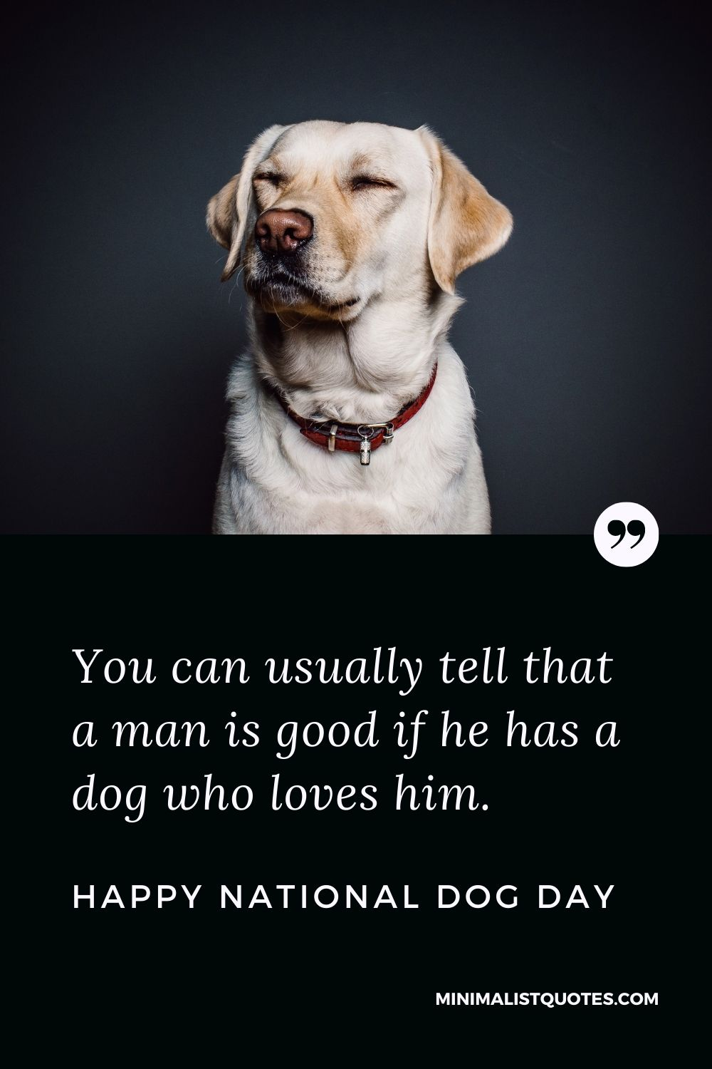 National Dog Day Quote, Wish & Message With Image: You can usually tell that a man is good if he has a dog who loves him. Happy National Dog Day!