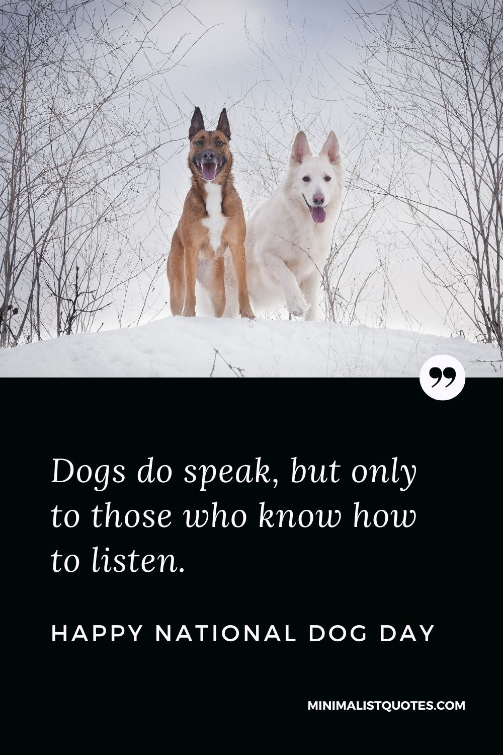 National Dog Day Quote, Wish & Message With Image: Dogs do speak, but only to those who know how to listen. Happy National Dog Day!