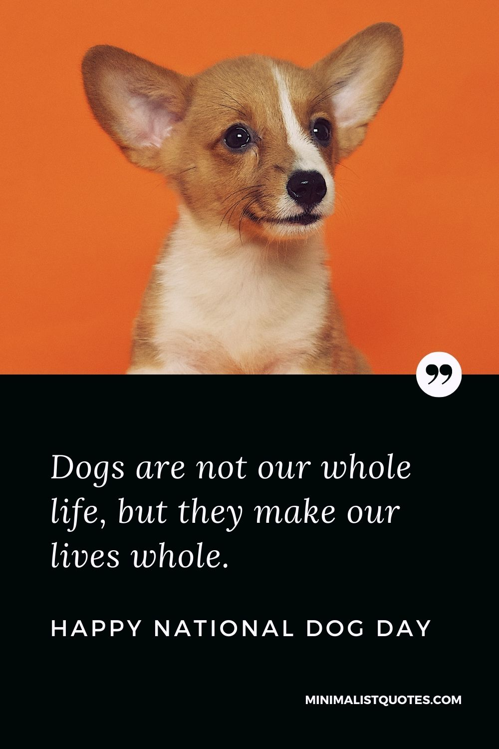 National dog day Quote, Wish & Message With Image: Dogs are not our whole life, but they make our lives whole. Happy National Dog Day!