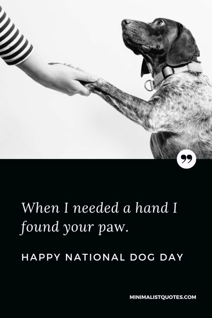 National Dog Day Quote, Message & Wish With Image: When I needed a hand I found your paw. Happy National Dog Day!