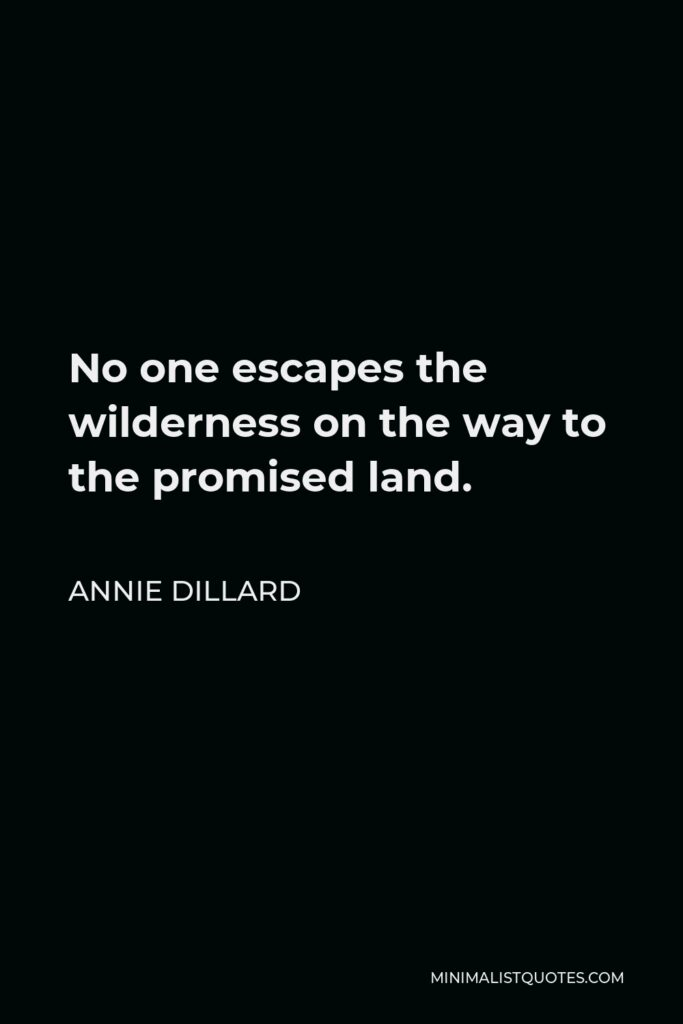 Annie Dillard Quote - No one escapes the wilderness on the way to the promised land.