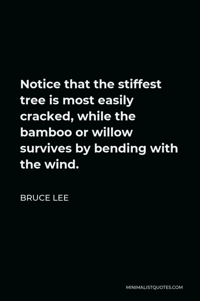 Bruce Lee Quote - Notice that the stiffest tree is most easily cracked, while the bamboo or willow survives by bending with the wind.