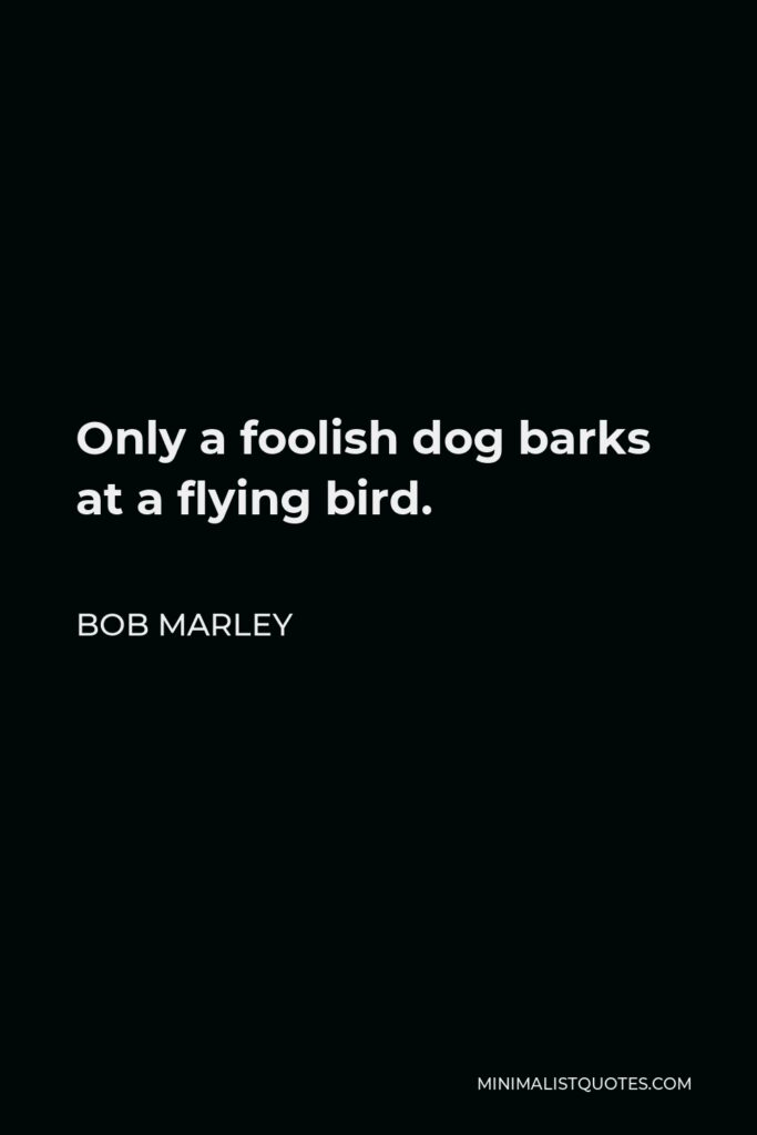 Bob Marley Quote - Only a foolish dog barks at a flying bird.