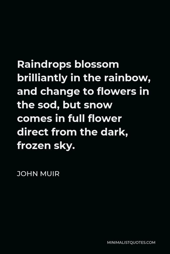 John Muir Quote - Raindrops blossom brilliantly in the rainbow, and change to flowers in the sod, but snow comes in full flower direct from the dark, frozen sky.