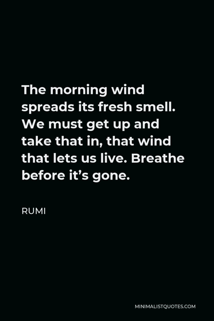 Rumi Quote - The morning wind spreads its fresh smell. We must get up and take that in, that wind that lets us live. Breathe before it's gone.