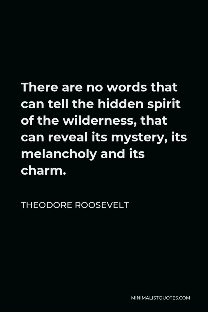 Theodore Roosevelt Quote - There are no words that can tell the hidden spirit of the wilderness, that can reveal its mystery, its melancholy and its charm.