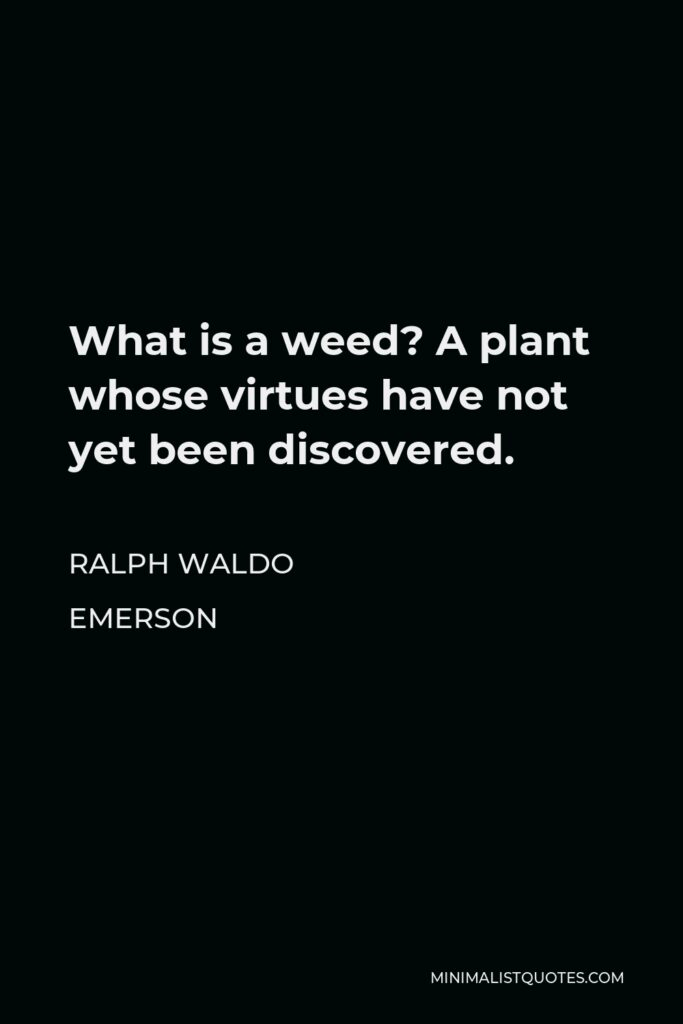 Ralph Waldo Emerson Quote - What is a weed? A plant whose virtues have not yet been discovered.