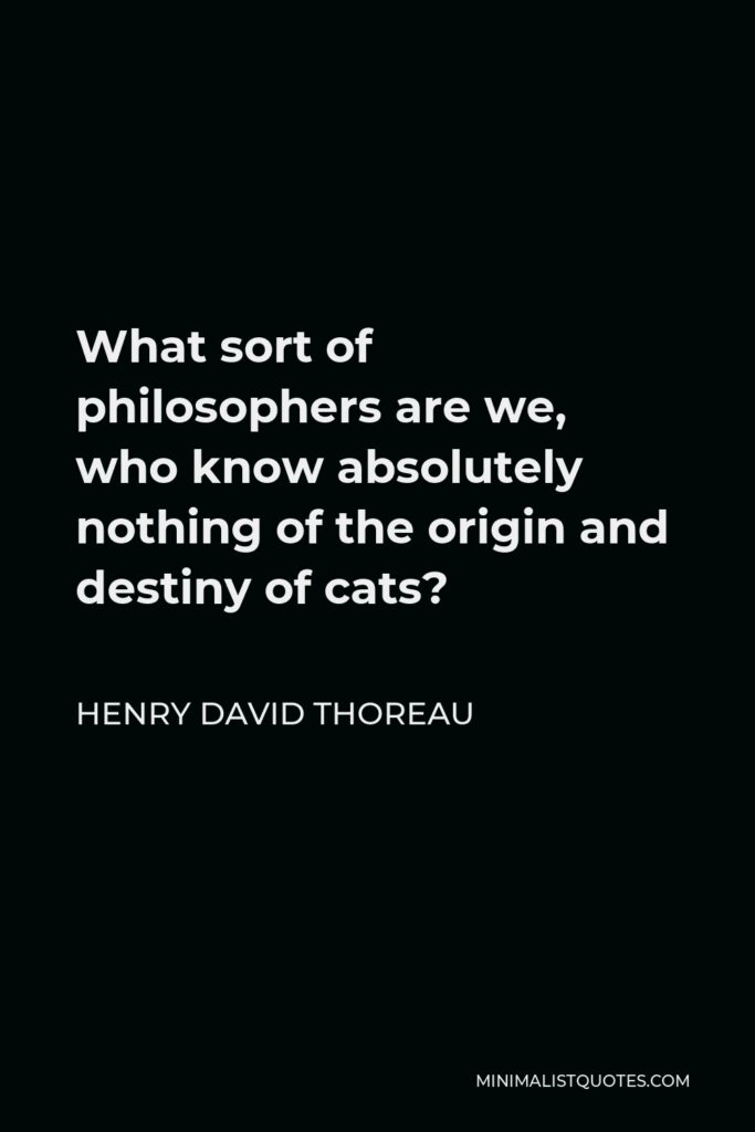 Henry David Thoreau Quote - What sort of philosophers are we, who know absolutely nothing of the origin and destiny of cats?