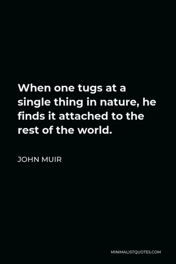 John Muir Quote - When one tugs at a single thing in nature, he finds it attached to the rest of the world.