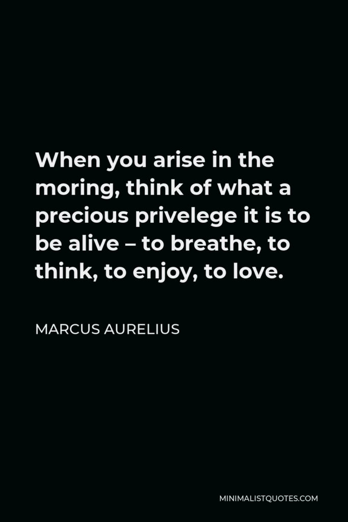 Marcus Aurelius Quote - When you arise in the moring, think of what a precious privelege it is to be alive – to breathe, to think, to enjoy, to love.