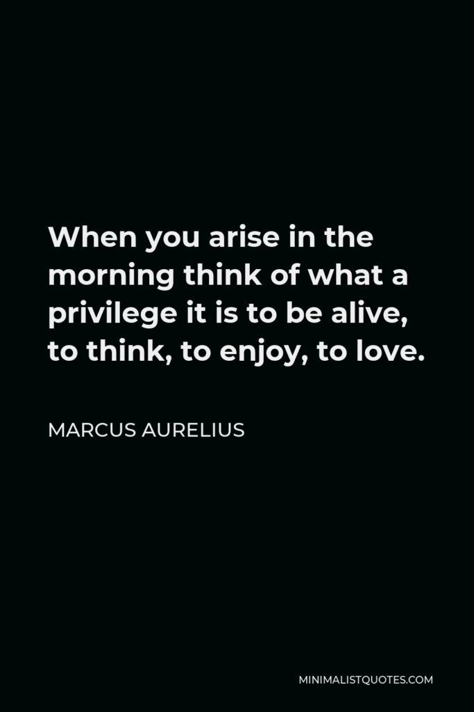 Marcus Aurelius Quote - When you arise in the morning think of what a privilege it is to be alive, to think, to enjoy, to love.