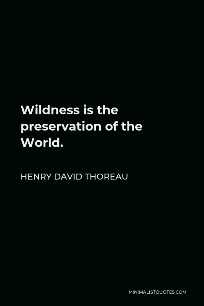 Henry David Thoreau Quote - Wildness is the preservation of the World.