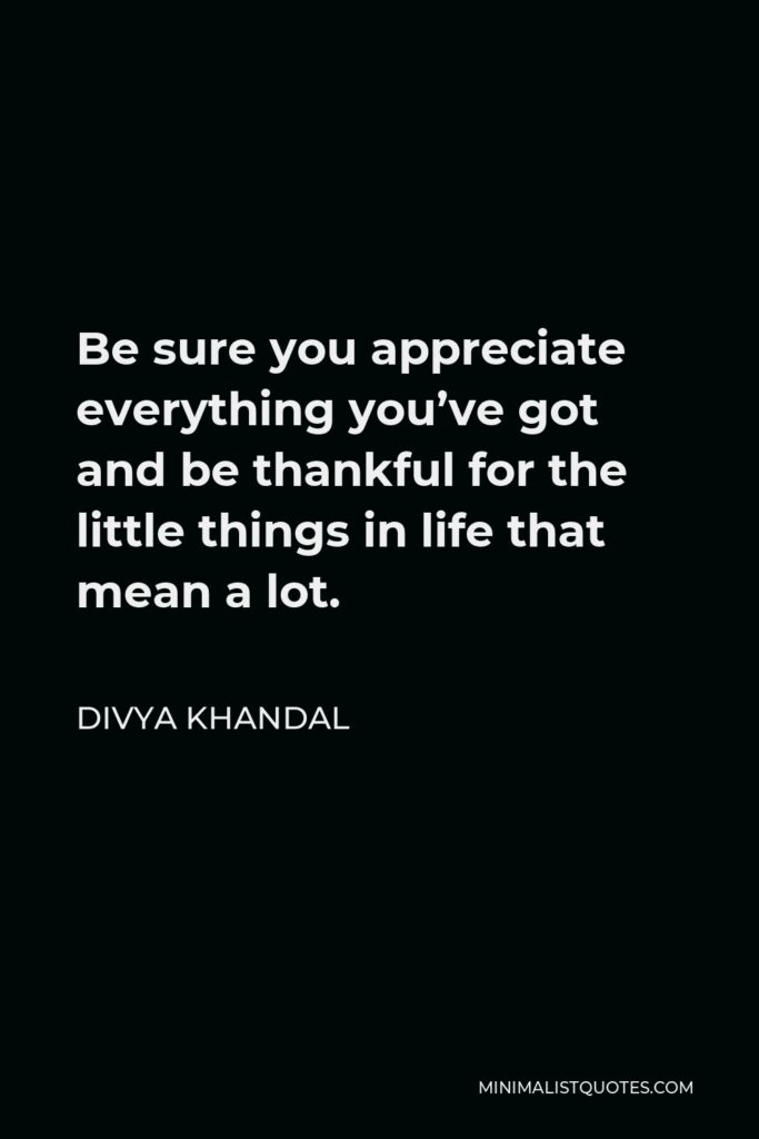 Divya khandal Quote - Be sure you appreciate everything you've got and be thankful for the little things in life that mean a lot.