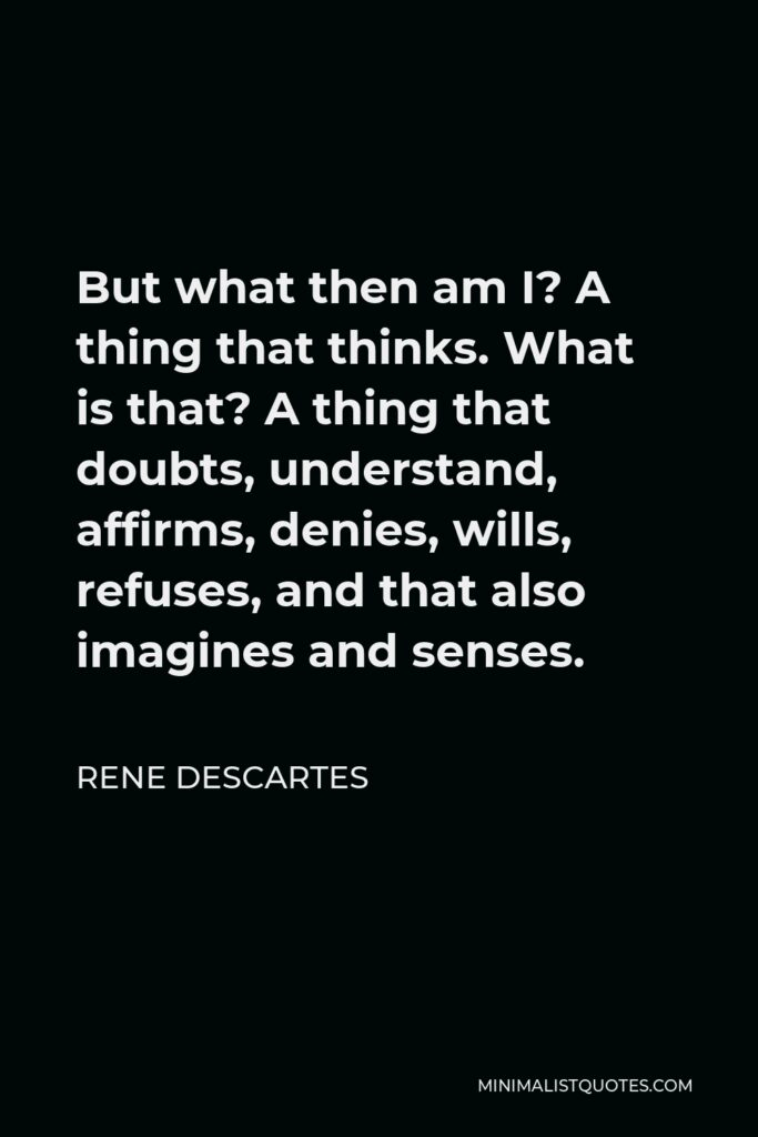 Rene Descartes Quote - But what then am I? A thing that thinks. What is that? A thing that doubts, understand, affirms, denies, wills, refuses, and that also imagines and senses.
