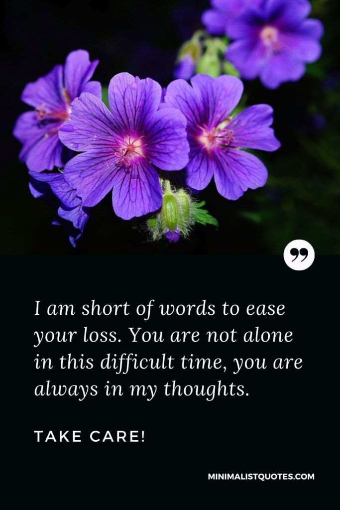 Divorce Quote, Sympathy & Message With Image: I am short of words to ease your loss. You are not alone in this difficult time, you are always in my thoughts. Take Care!