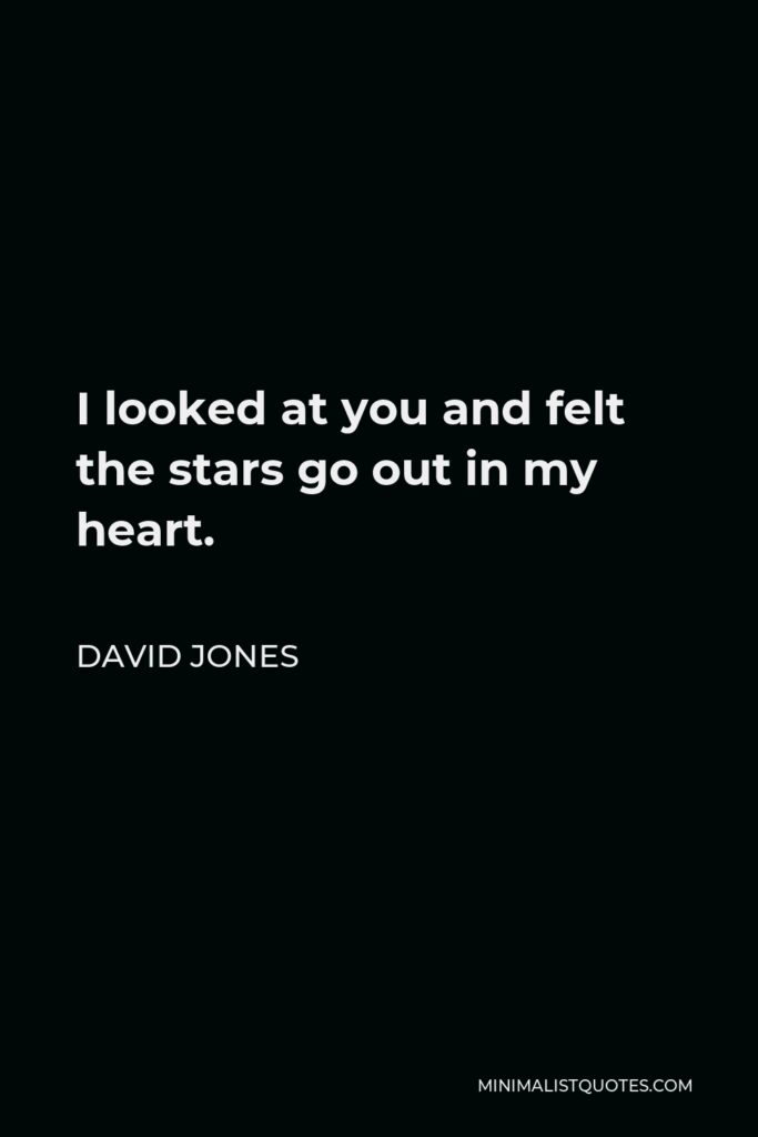 David Jones Quote - I looked at you and felt the stars go out in my heart.