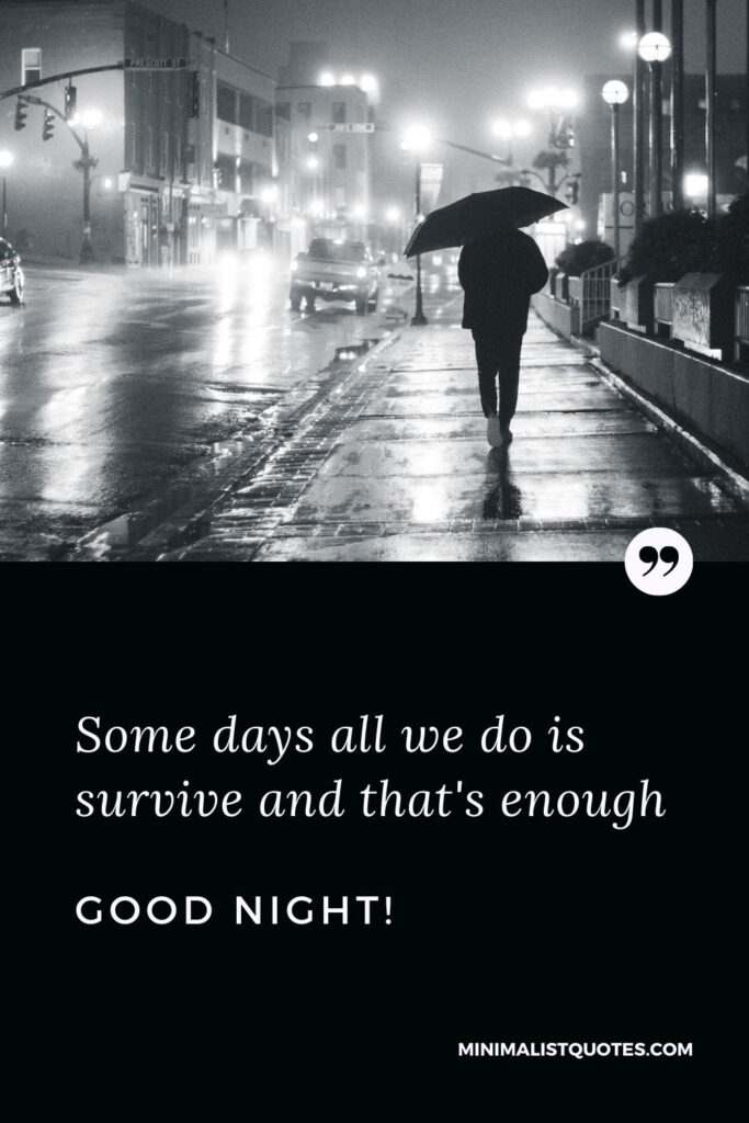 Good Night Quote, Wish & Message With Image: Some days all we do is survive and that's enough. Good Night!