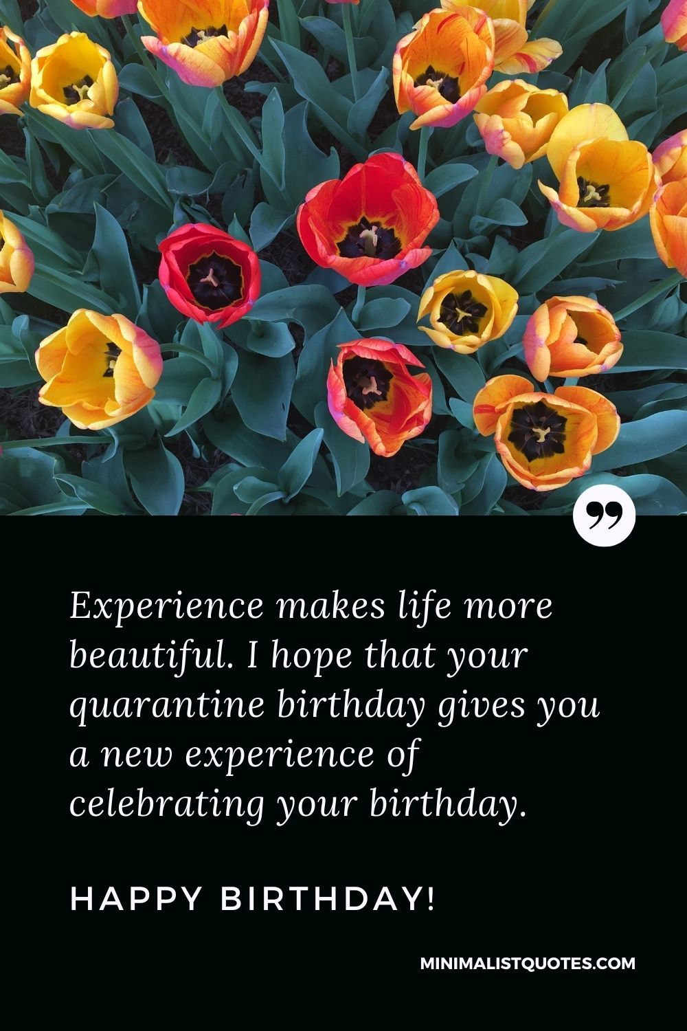 Quarantine Birthday Quote, Wish & Message With Image: Experience makes life more beautiful. I hope that your quarantine birthday gives you a new experience of celebrating your birthday. Happy Birthday!