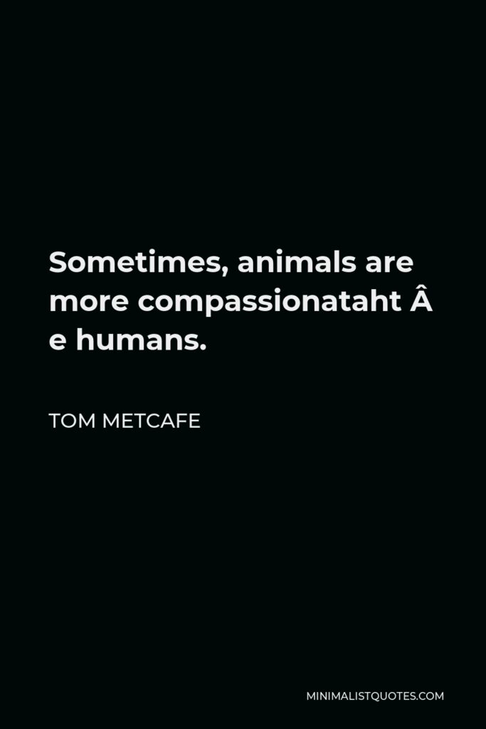 Tom Metcafe Quote - Sometimes, animals are morecompassionatethan humans.