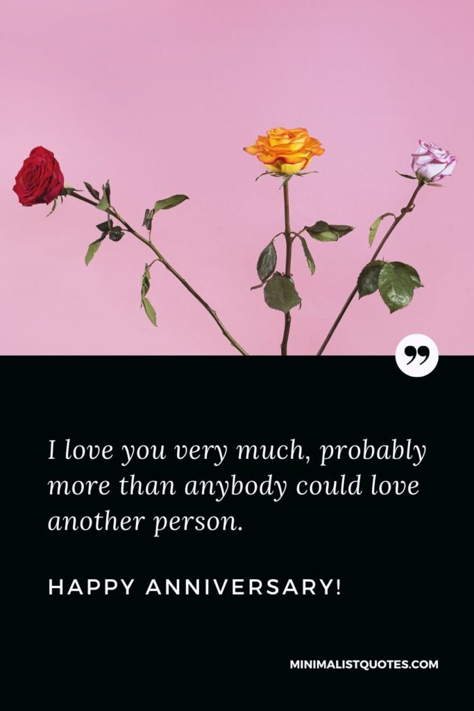 Anniversary wishes for wife: I love you so much, probably more than anybody could love another person. Happy Anniversary!
