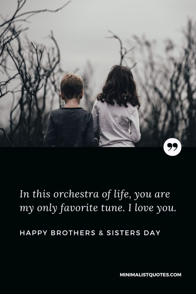 Brothers & Sisters Day Quote, Wish & Message With Image: In this orchestra of life, you are my only favorite tune. I love you. Happy Brothers & Sisters Day!