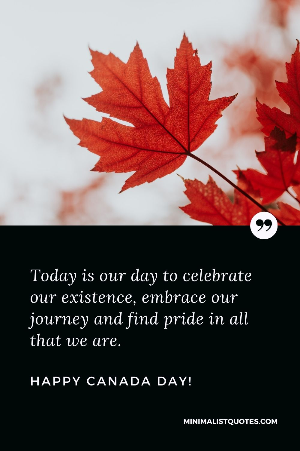 Canada day greetings: Today is our day to celebrate our existence, embrace our journey and find pride in all that we are. Happy Canada Day!