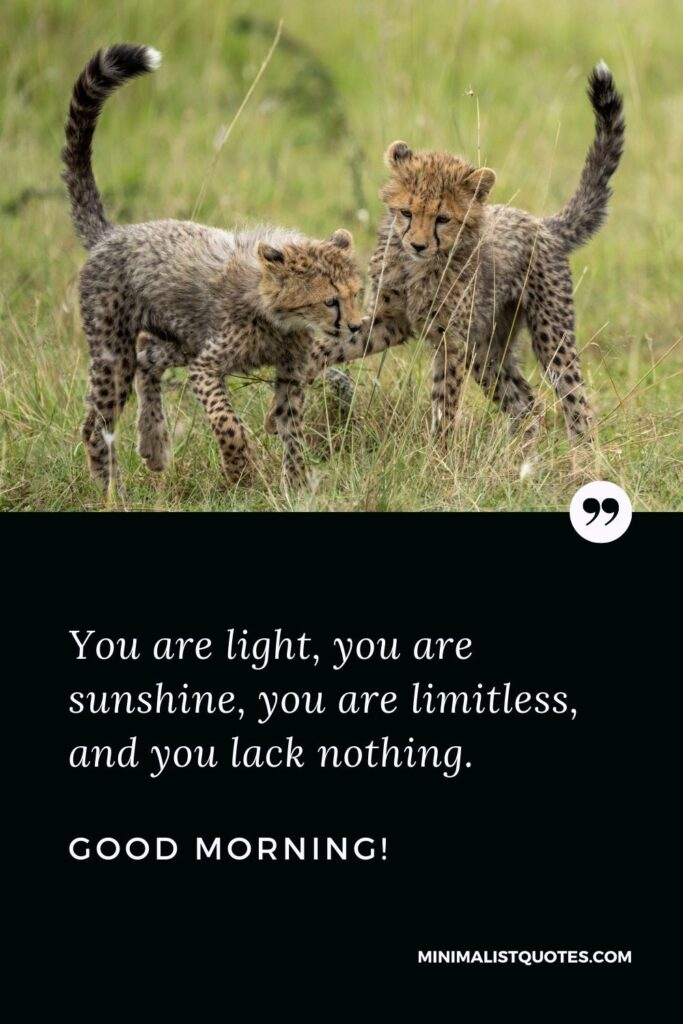 Good Morning Message For Best Friend: You are light, you are sunshine, you are limitless, and you lack nothing. Good Morning!