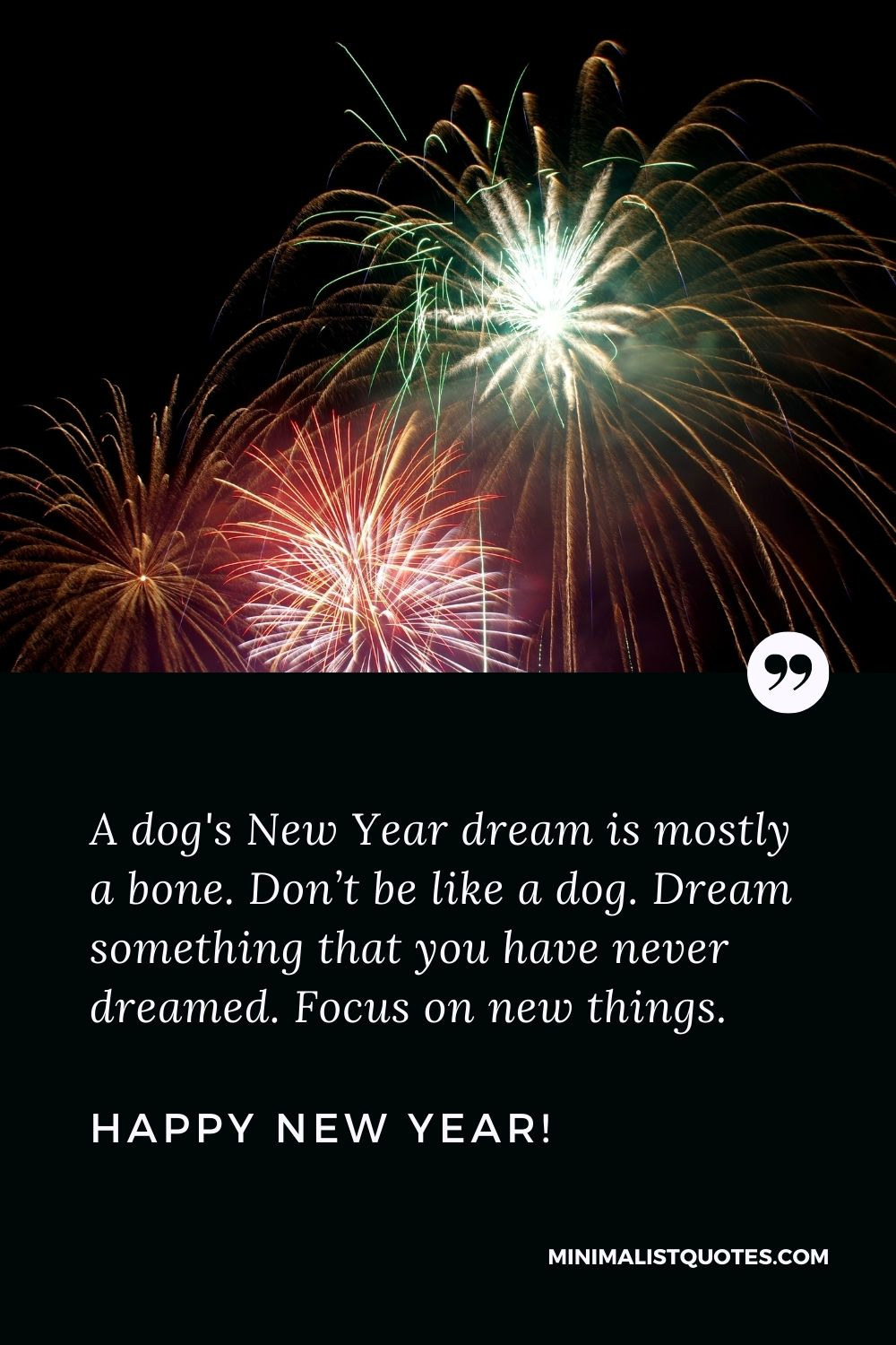 Happy New Year Quote: A dog's New Year dream is mostly a bone. Don't be like a dog. Dream something that you have never dreamed. Focus on new things. Happy New Year!