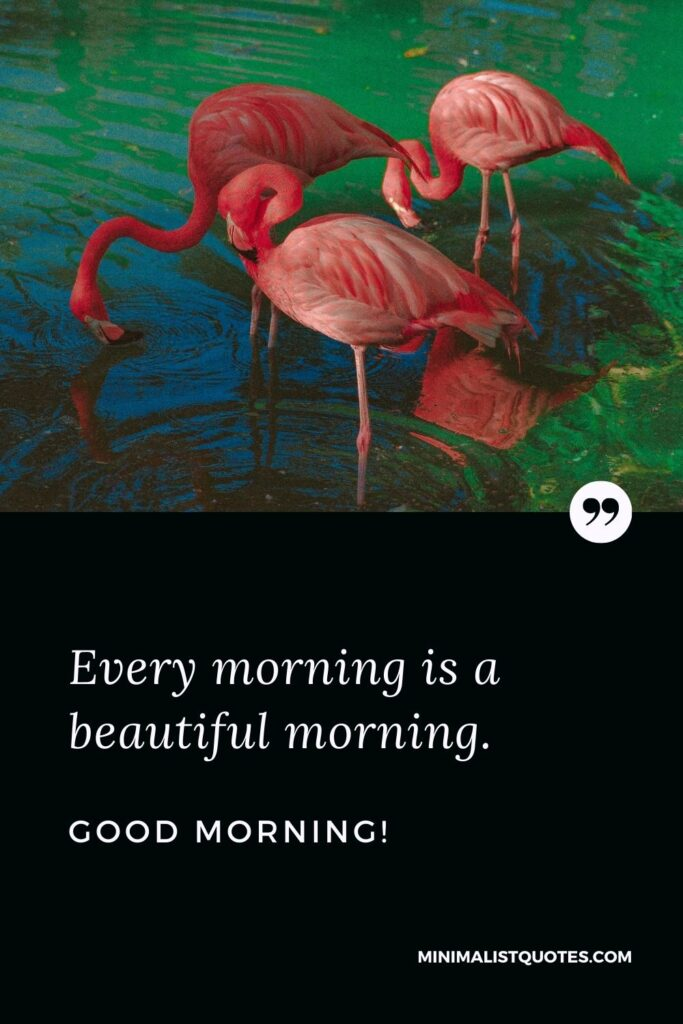 Morning Quote, Wish & Message: Every morning is a beautiful morning. Good Morning!