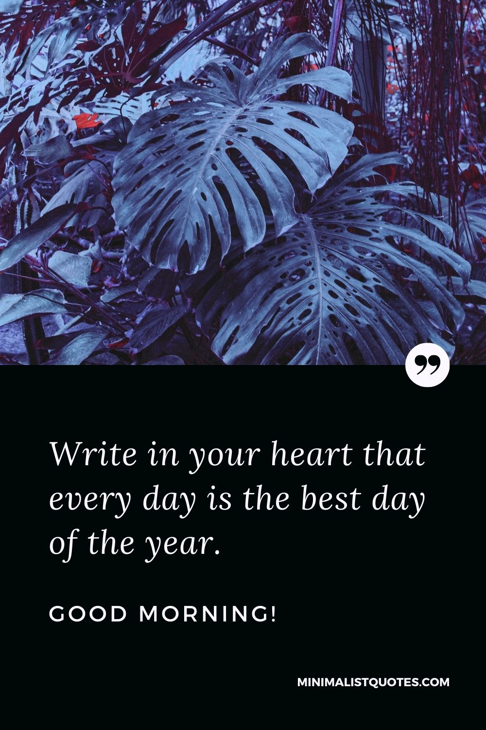 Good Morning Quote, Wish & Message: Write in your heart that every day is the best day of the year. Good Morning!