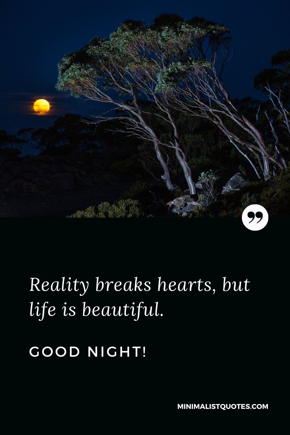 Good Night Quote, Wish & Message With Image: Reality breaks hearts, but life is beautiful. Good night!