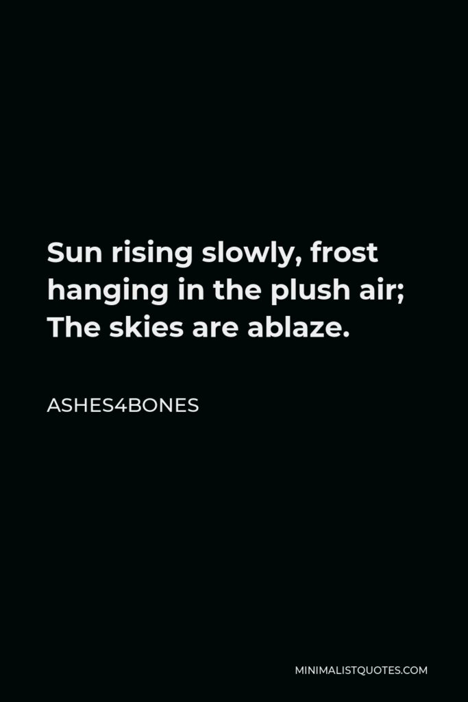 Ashes4bones Quote - Sun rising slowly, frost hanging in the plush air; The skies are ablaze.
