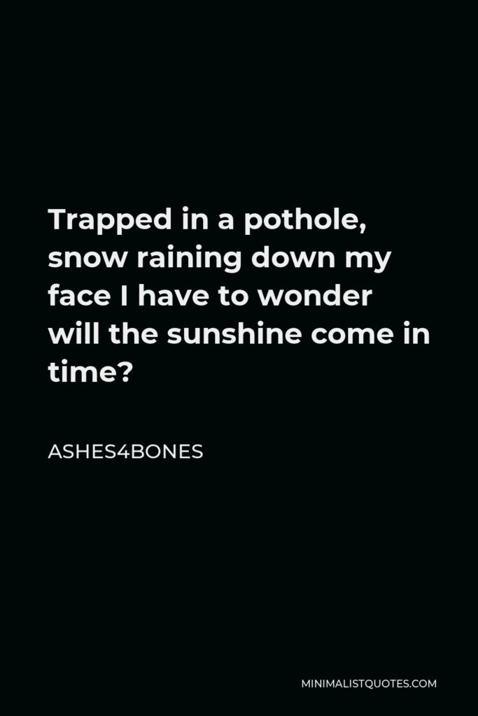 Ashes4bones Quote - Trapped in a pothole, snow raining down my face I have to wonder will the sunshine come in time?