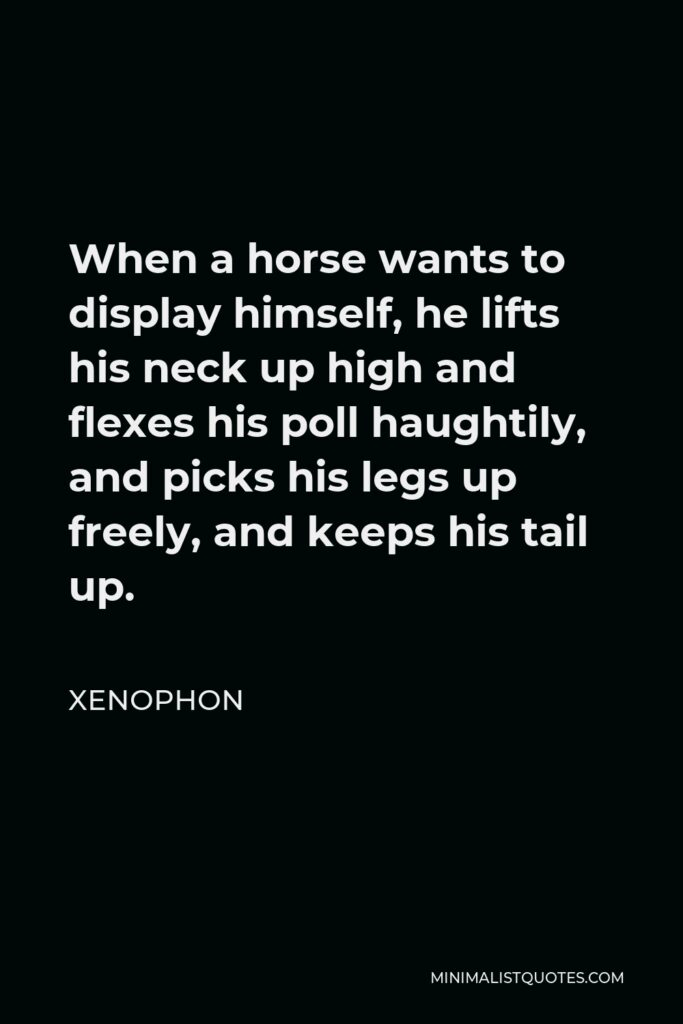 Xenophon Quote - When a horse wants to display himself, he lifts his neck up high and flexes his poll haughtily, and picks his legs up freely, and keeps his tail up.