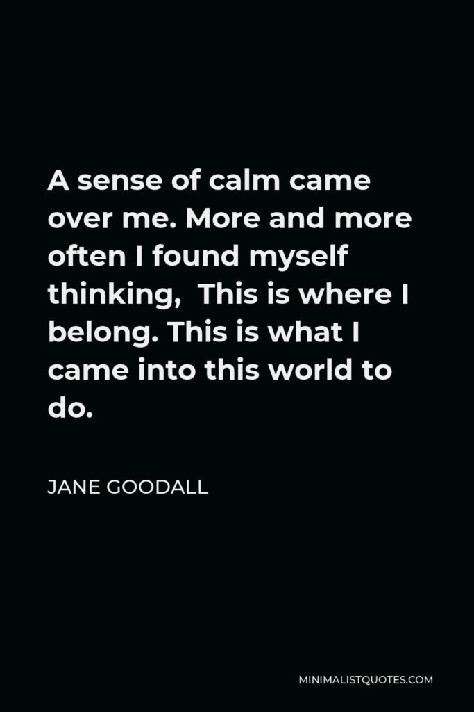 Jane Goodall Quote - A sense of calm came over me. More and more often I found myself thinking, This is where I belong. This is what I came into this world to do.