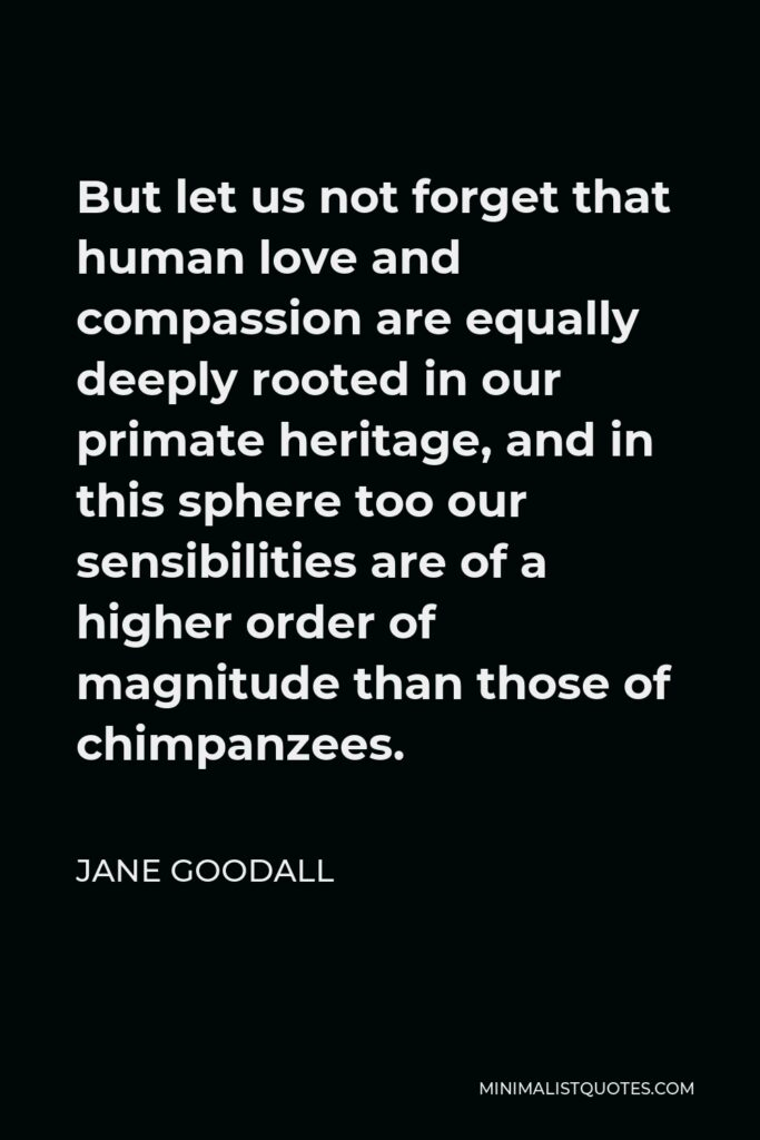 Jane Goodall Quote - But let us not forget that human love and compassion are equally deeply rooted in our primate heritage, and in this sphere too our sensibilities are of a higher order of magnitude than those of chimpanzees.