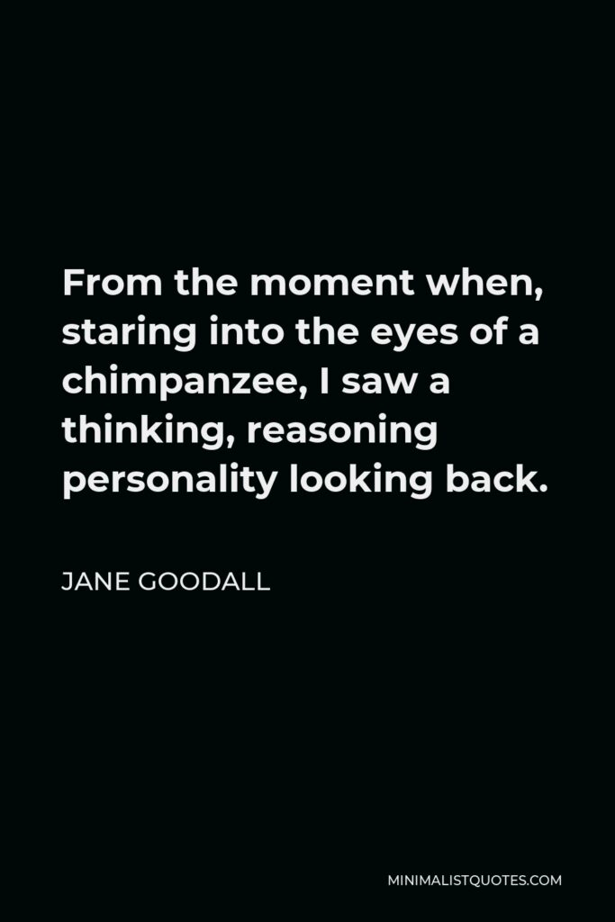 Jane Goodall Quote - From the moment when, staring into the eyes of a chimpanzee, I saw a thinking, reasoning personality looking back.