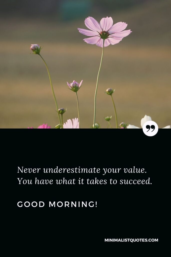 Good morning images with positive words: Never underestimate your value. You have what it takes to succeed. Good Morning!