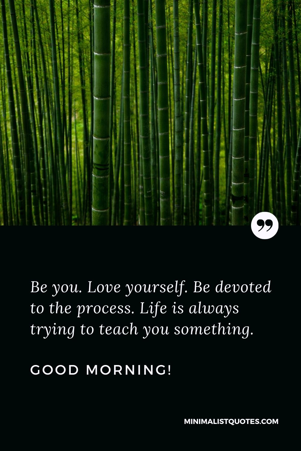 Good morning images with quotes for WhatsApp: Be you. Love yourself. Be devoted to the process. Life is always trying to teach you something. Good Morning!