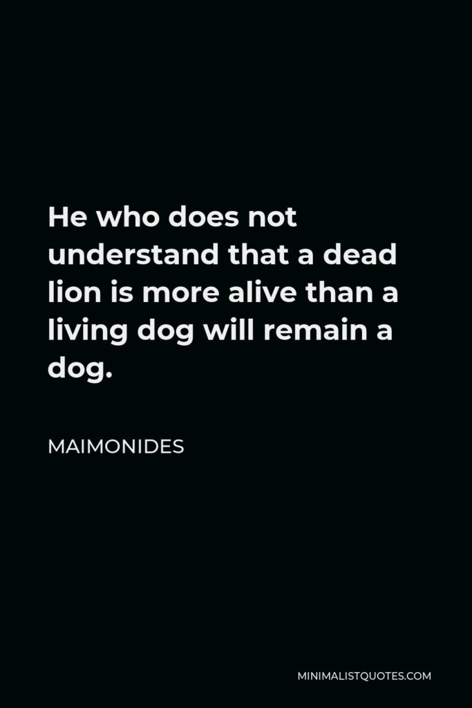 Maimonides Quote - He who does not understand that a dead lion is more alive than a living dog will remain a dog.