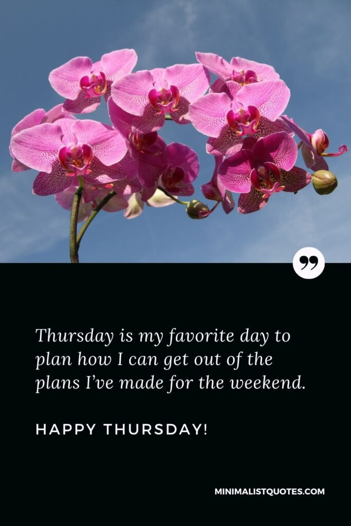 Its Thursday quotes: Thursday is my favorite day to plan how I can get out of the plans I've made for the weekend. Happy Thursday!