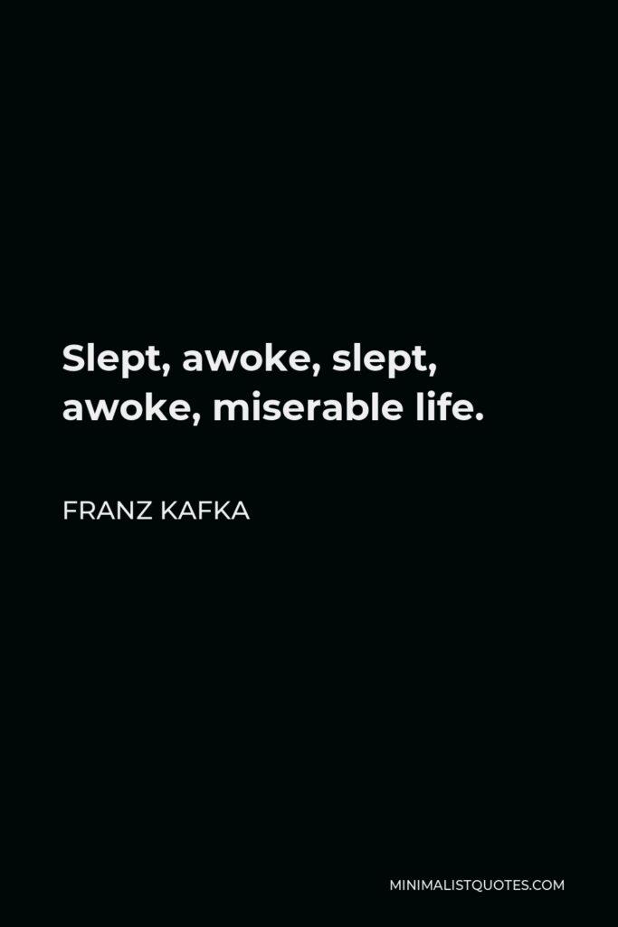 Franz Kafka Quote - Slept, awoke, slept, awoke, miserable life.