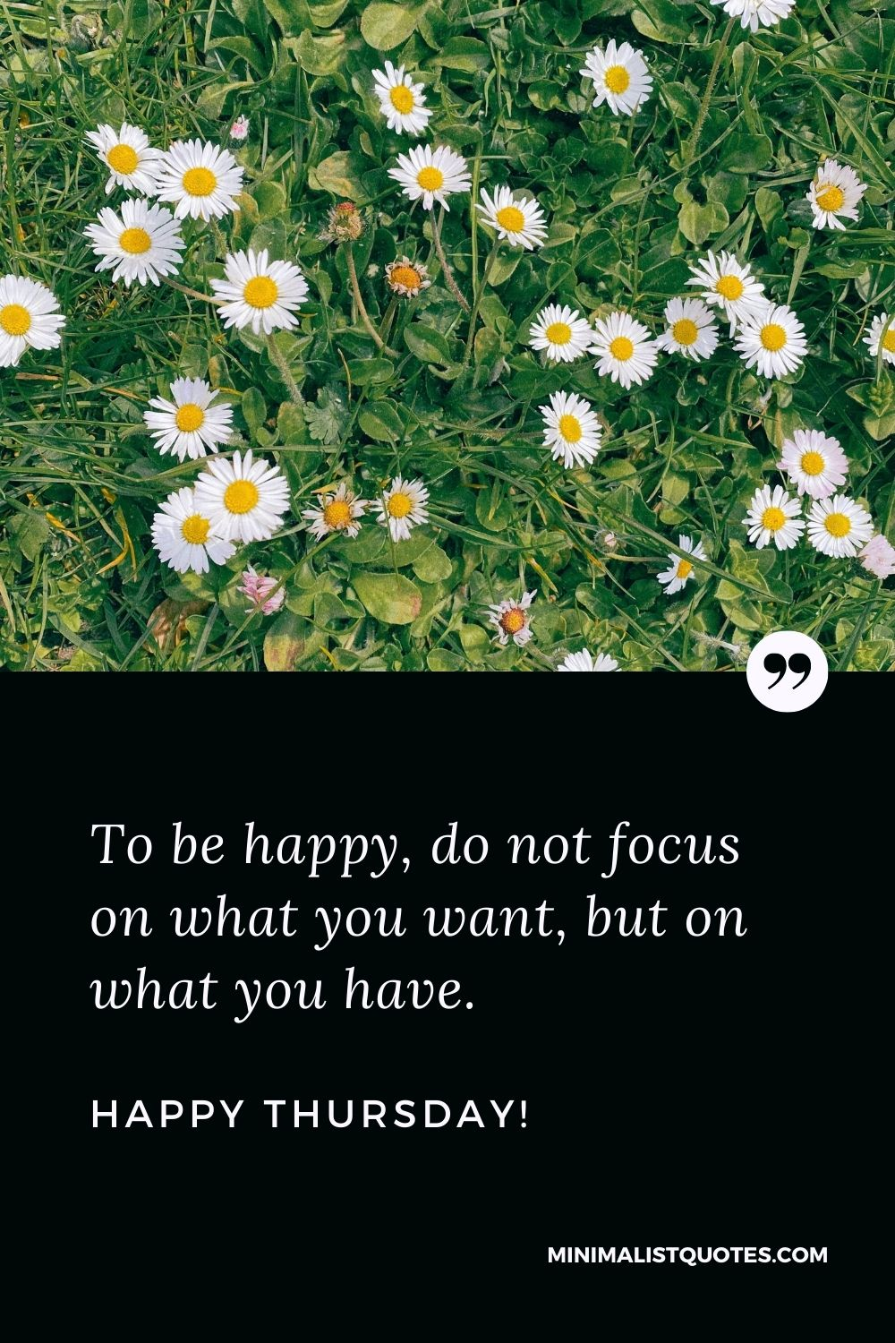Thankful Thursday quotes: To be happy, do not focus on what you want, but on what you have. Happy Thursday!