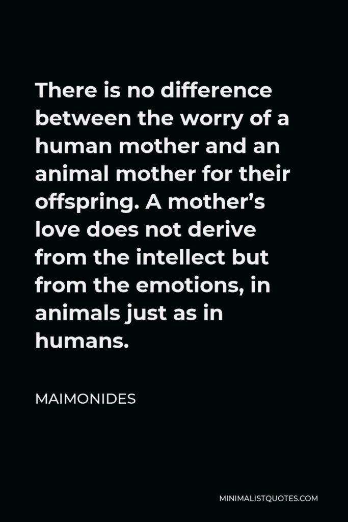 Maimonides Quote - There is no difference between the worry of a human mother and an animal mother for their offspring. A mother's love does not derive from the intellect but from the emotions, in animals just as in humans.