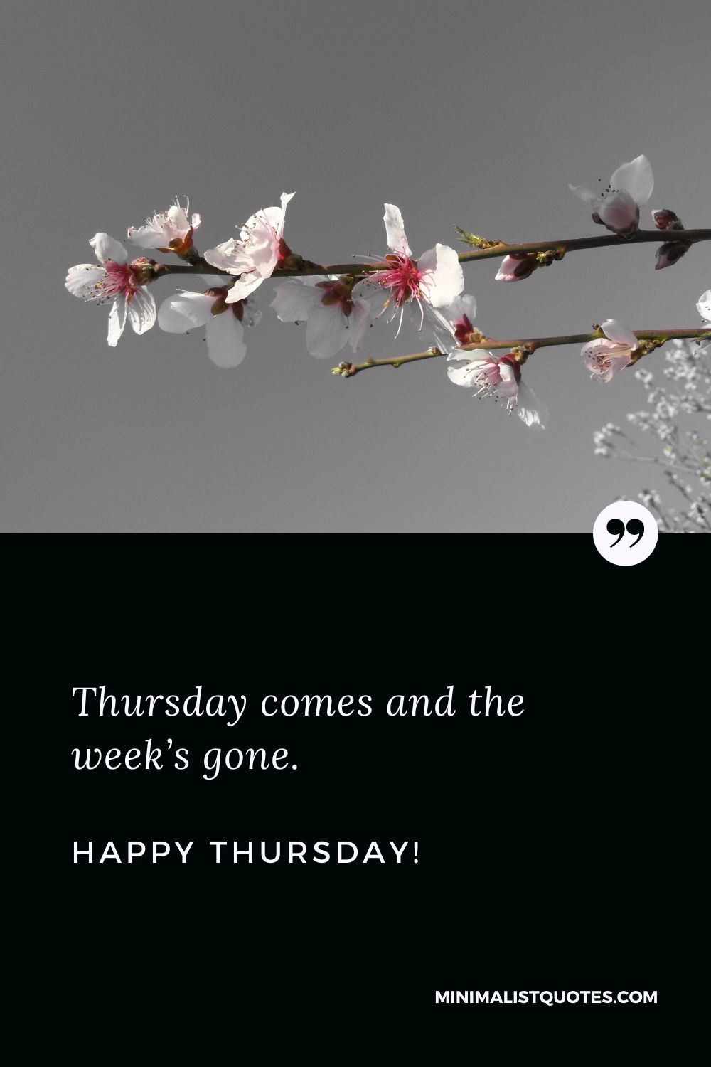 Thursday evening quotes: Thursday comes and the week's gone. Happy Thursday!