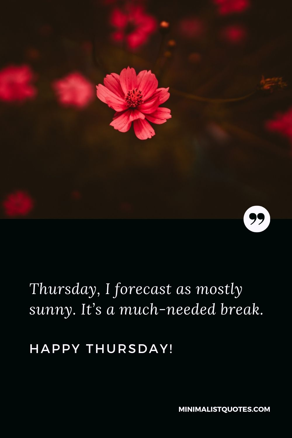 Thursday quotes of the day: Thursday, I forecast as mostly sunny. It's a much-needed break. Happy Thursday!