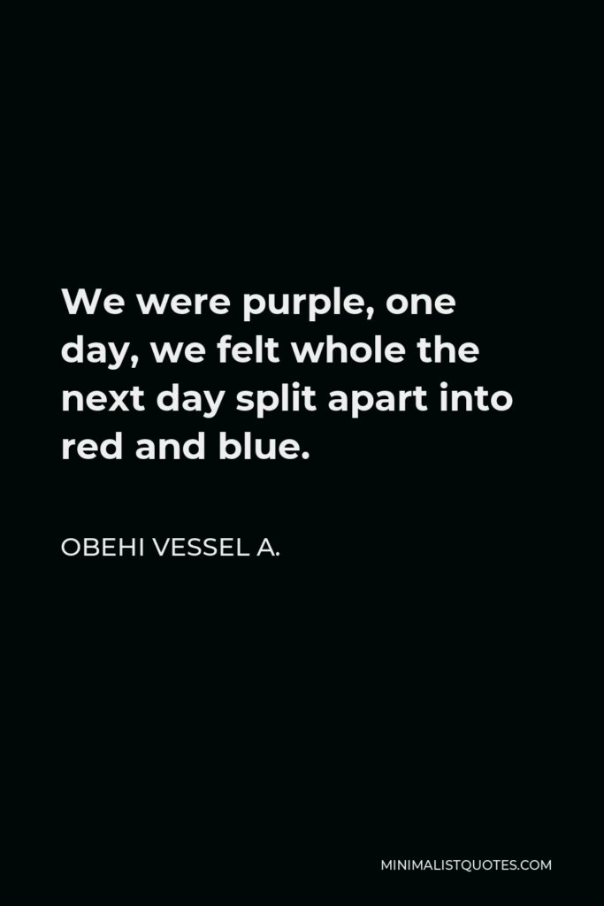 Obehi Vessel A. Quote - We were purple, one day, we felt whole the next day split apart into red and blue.
