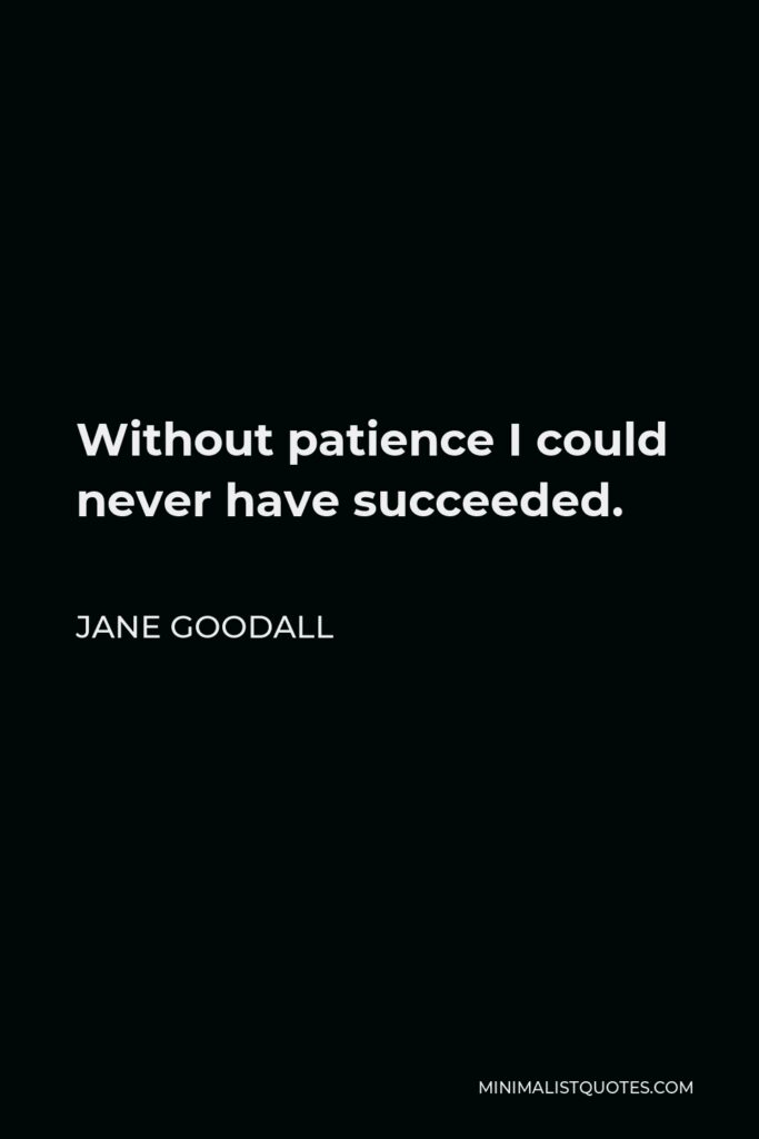 Jane Goodall Quote - Without patience I could never have succeeded.