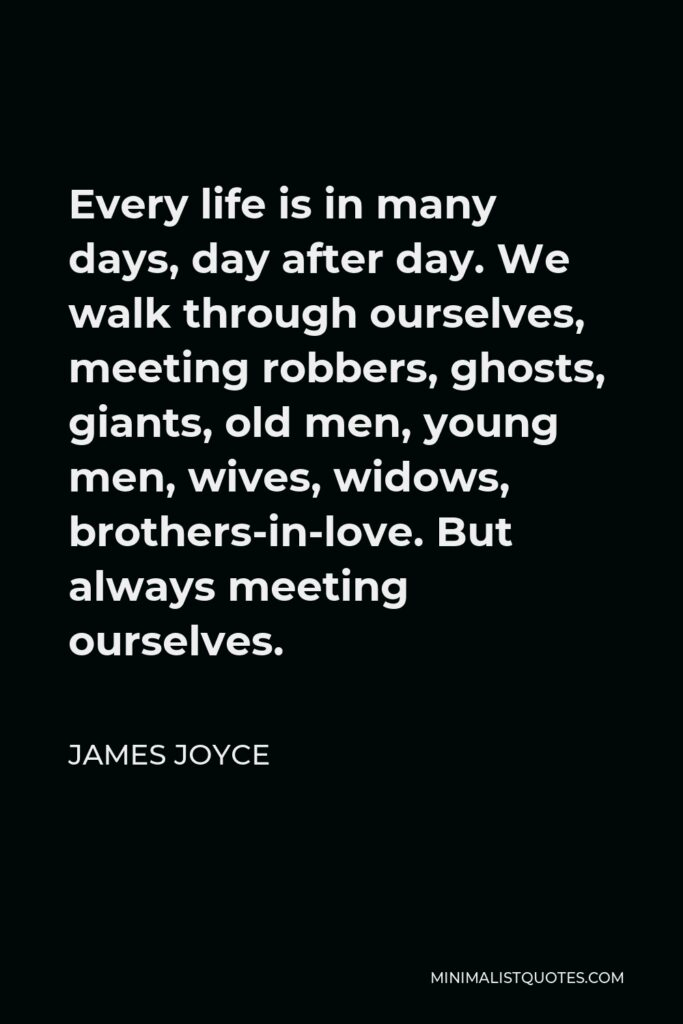 James Joyce Quote - Every life is in many days, day after day. We walk through ourselves, meeting robbers, ghosts, giants, old men, young men, wives, widows, brothers-in-love. But always meeting ourselves.
